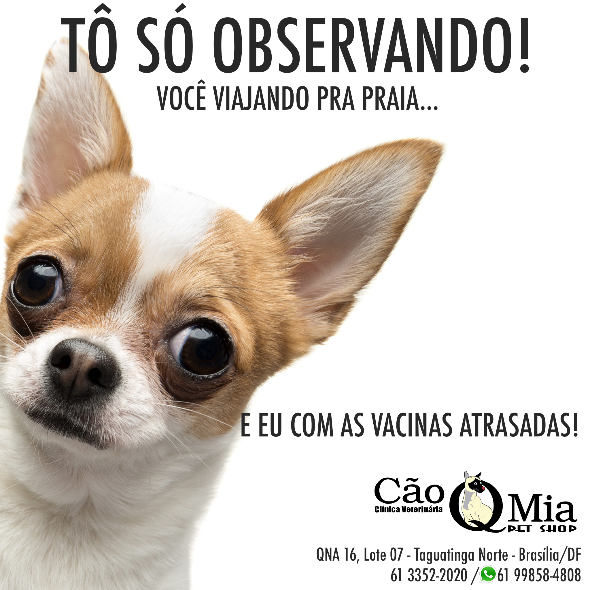 vacina_cqm